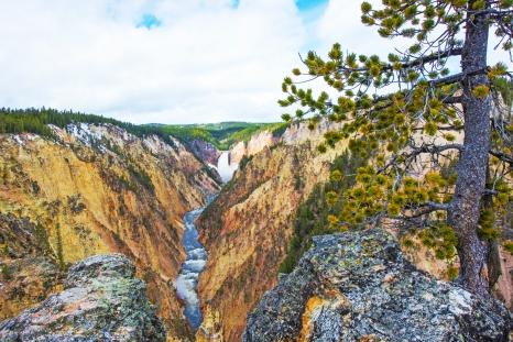 Grand Canyon of Yellowstone May 2019