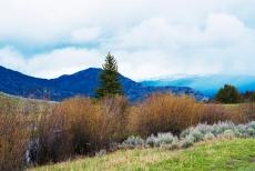 Yellowstone Rainbows May 2019